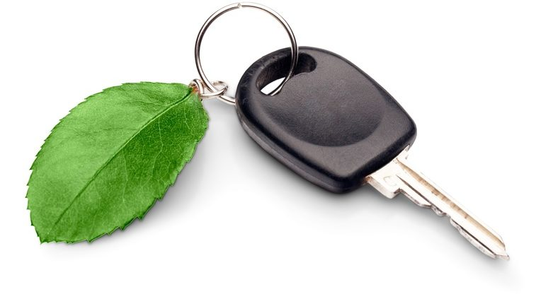 key with a green leaf